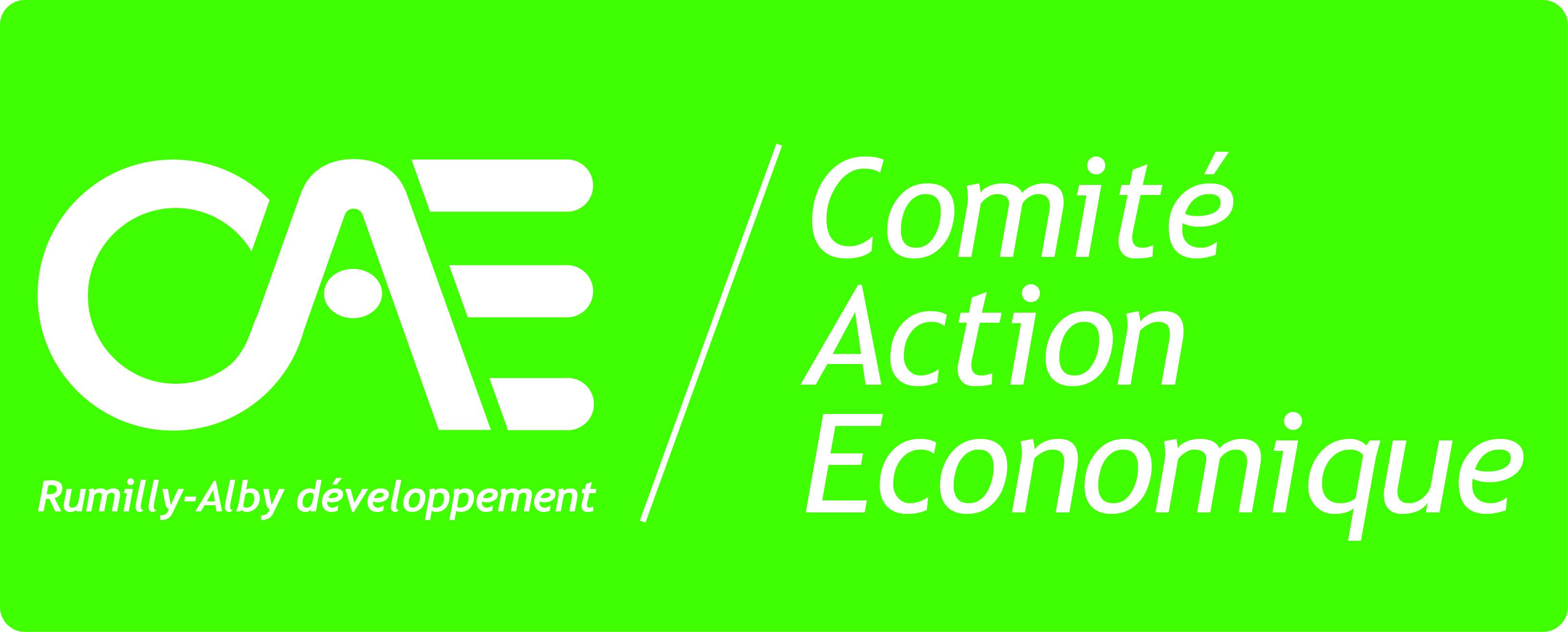 logo_CAE2010